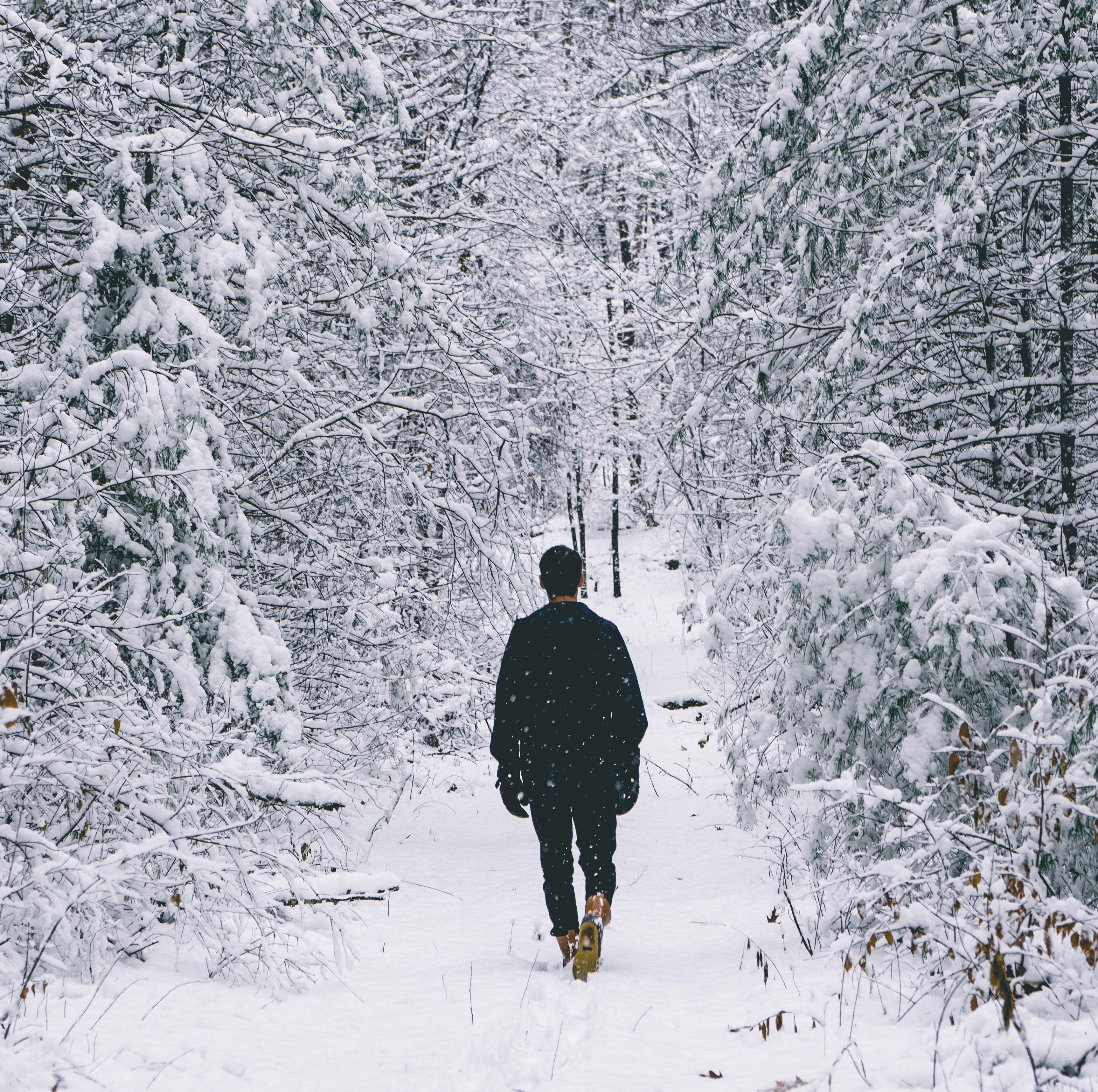"""Программа """"ПроДвижение: 4 шага в направлении цели"""" в декабре-январе"""