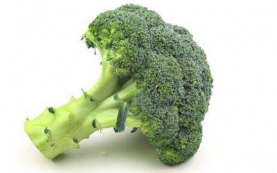 Новый тренинг «Еда – балансы или балласты…?»