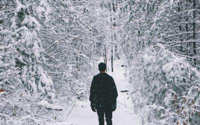 Программа «ПроДвижение: 4 шага в направлении цели» в декабре-январе