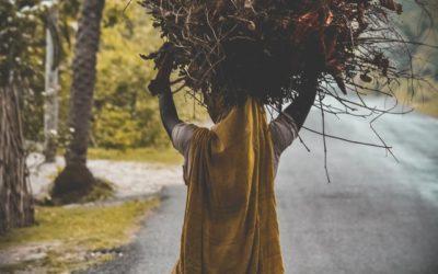 Женский он-лайн практикум «Психосоматика лишнего веса:  8 шагов к естественной стройности»
