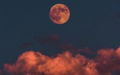 «Мой сон: послания снов и бессоницы» — углубленный он-лайн практикум.